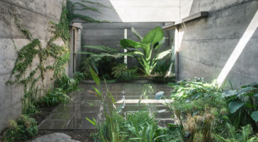 MORQ's rammed-concreteCloister House hides lushinternal courtyard